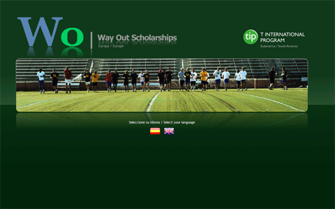 Wayout Scholarships